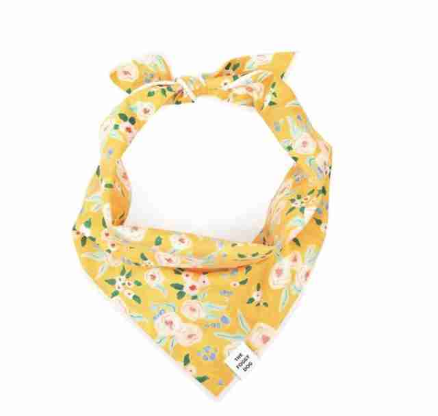 yellow floral dog bandana