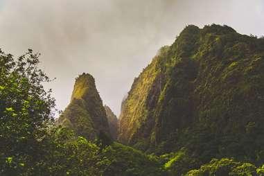 green jungle mountains
