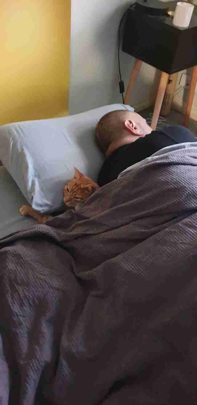 cat sleep over