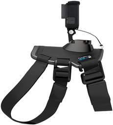 GoPro harness