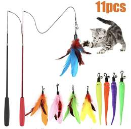 Amazon Feather Cat Toys
