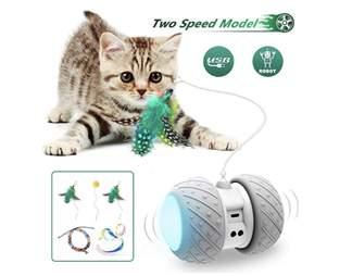 Interactive robotic cat toy