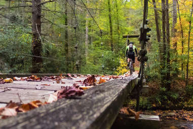 South Mills River Trail in Pisgah National Forest