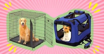Amazon dog crates
