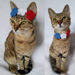 cat flower crown 4th of july