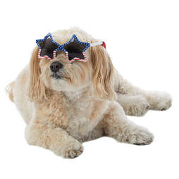 4th of july pet sunglasses