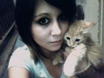 cat sweet 16