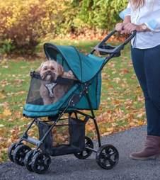 chewy pet gear happy trails stroller