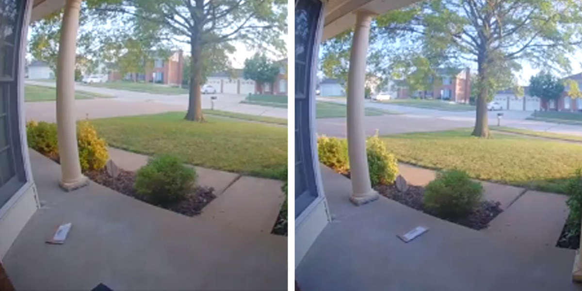 Camera Catches The Tiniest Thief Trying To Steal Guy's Mail