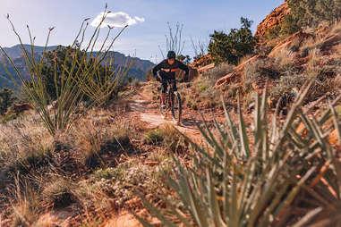 Mescal Mountain Trail