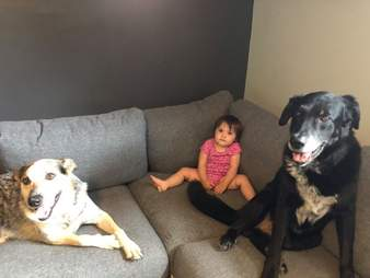 Ramona sits on the couch with her two dogs
