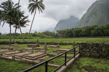 palm trees and mountains surrounding a gravesite on a misty day