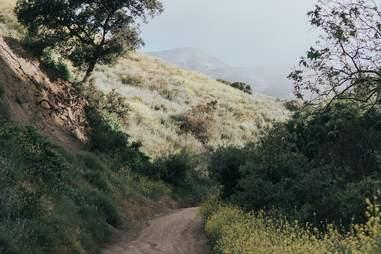 Black Star Canyon Trail Orange County California