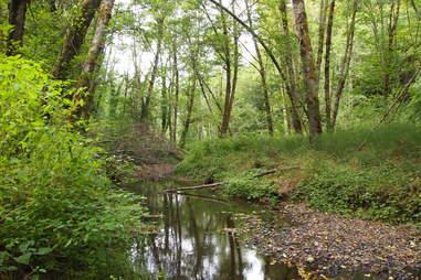 Tyron Creek State Park