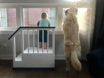 Kid looks out the window with his dog
