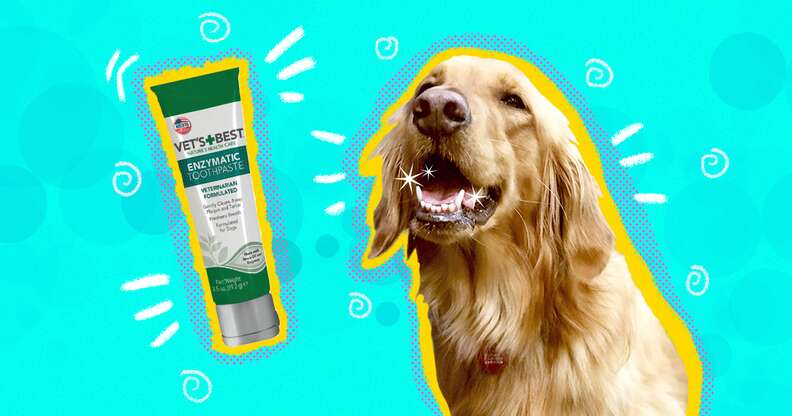 Vet's Best dog Toothpaste