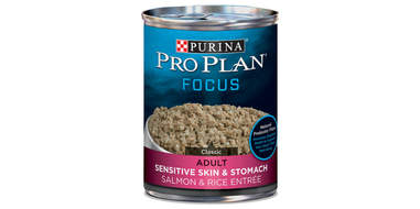 can of dog food
