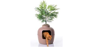 Hidden Cat Litter Planter