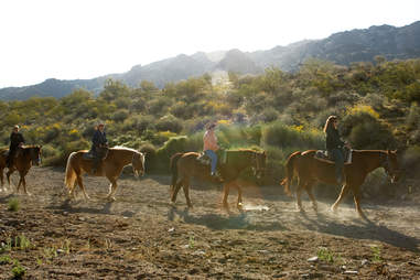 Phoenix horseback riding