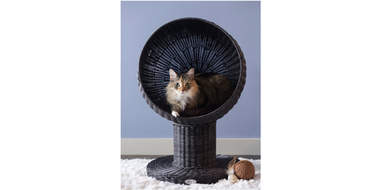 Elevated Round Modern Cat Bed