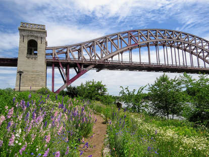 Hell Gate Wildflower Meadow & Picnic Area on Randall's Island