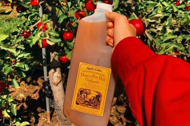 Honey Pot Hill Orchard