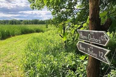 Greig Farm apple orchard trail