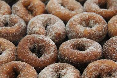 Wilkens Fruit and Fir Farm apple cider donuts