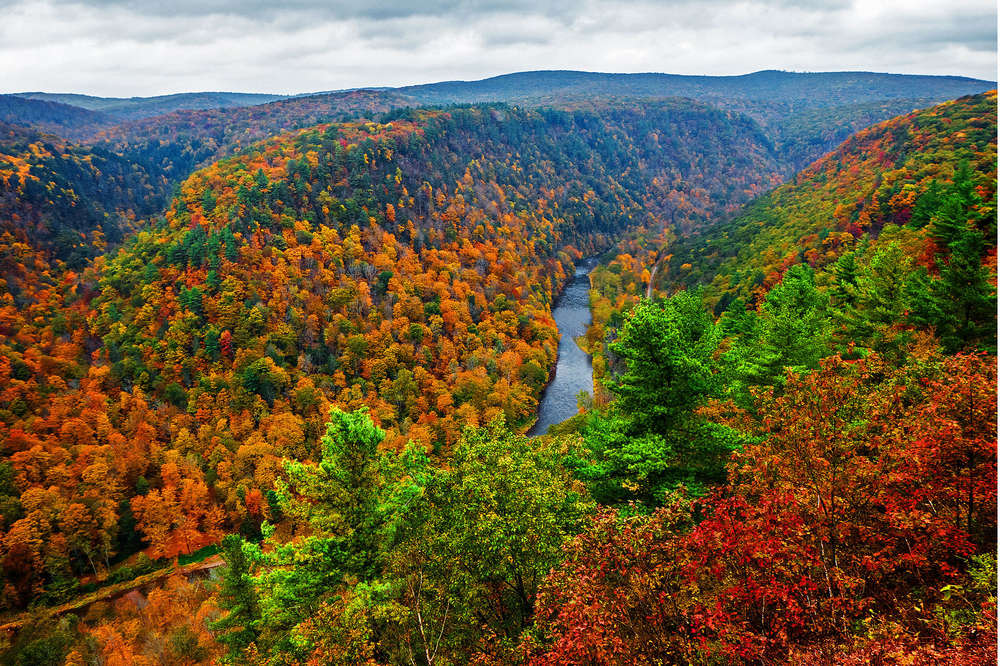 Fall Foliage Near DC: Places in the Mid-Atlantic to See Leaves Change Color - Thrillist