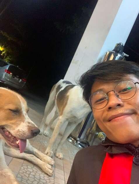 Stray dog follows guy to work