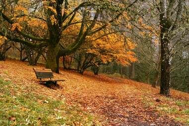 Hoyt Arboretum - Portland, OR