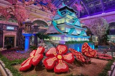 Bellagio Conservatory & Botanical Garden