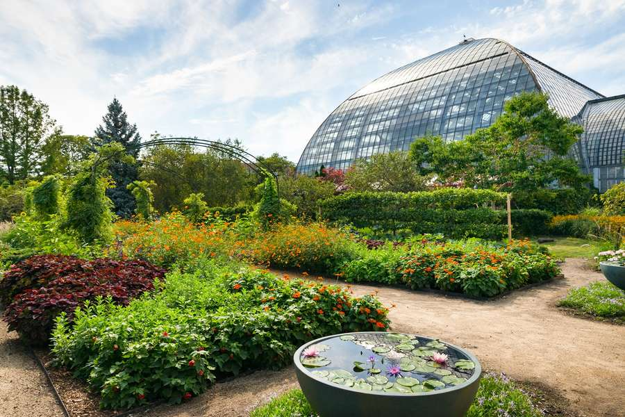 Escape Chicago Without Leaving Town By Visiting These 8 Places