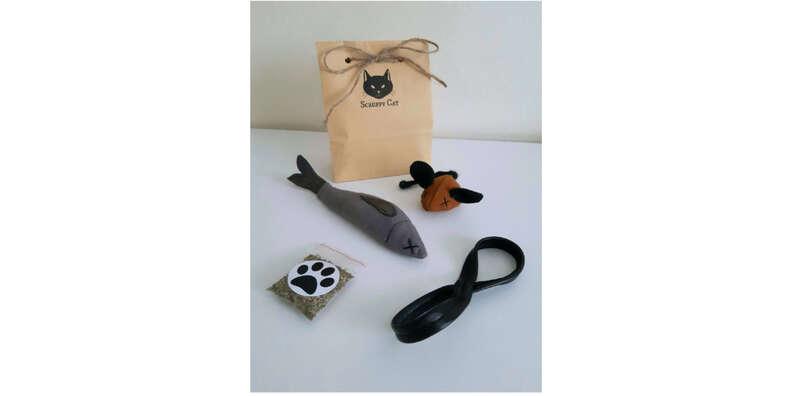 Catnip Toy Set