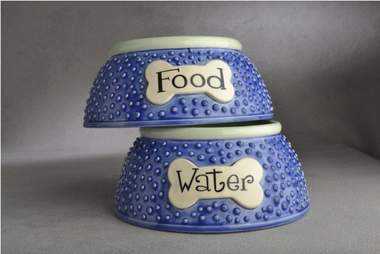 blue food and water dog bowl