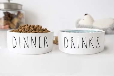 Classy dog bowls
