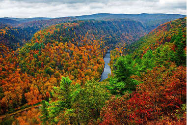 a river leading through vibrant fall trees