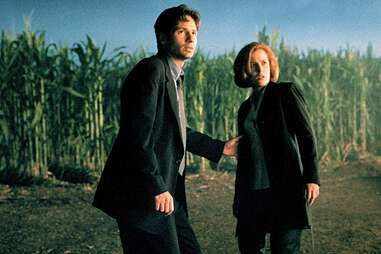david duchovy and gillian anderson in the x-files