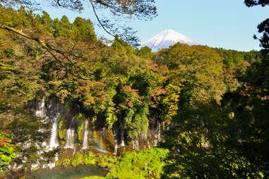 The Shiraito Falls