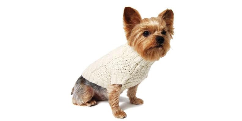 White Knit Dog Sweater