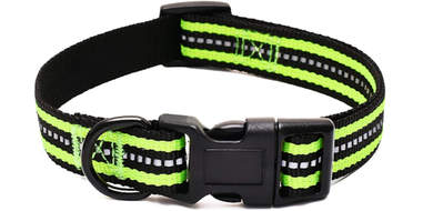 amazon reflective dog collar