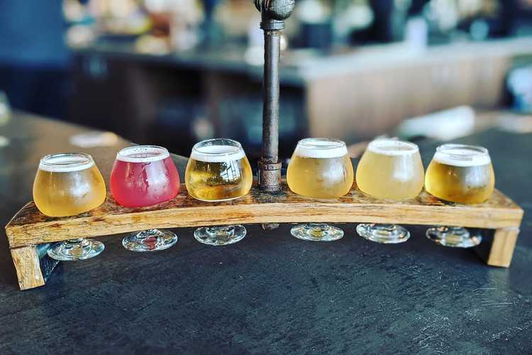 Steam Theory Brewing Company