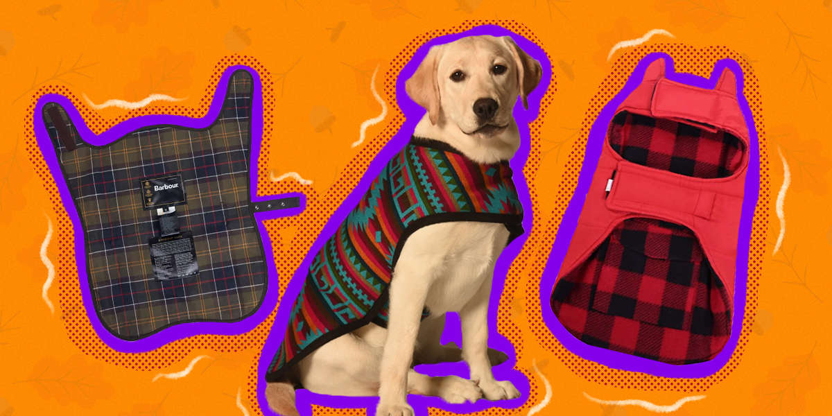 Fall Dog Coats Your Pup Will Actually Love Wearing