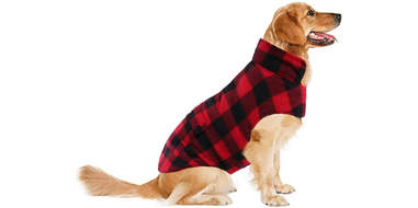 waterproof dog plaid coat amazon