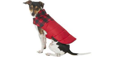 frisco boulder dog cat puffer coat