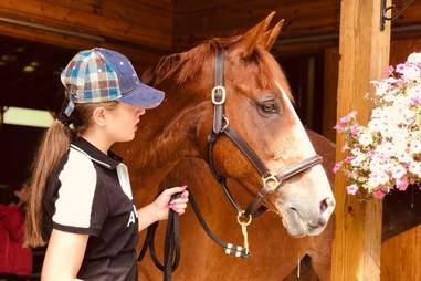 bronx equestrian center horse
