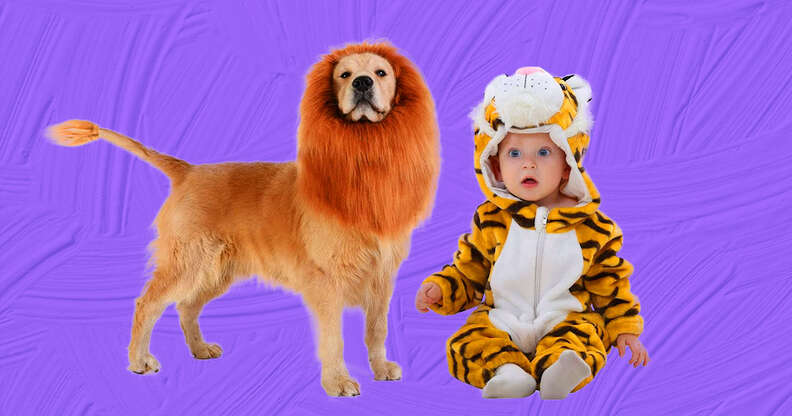 lion and tiger baby and dog costume
