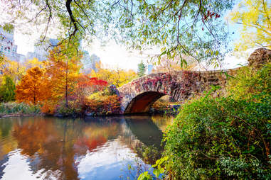 Central Park on an autumn day