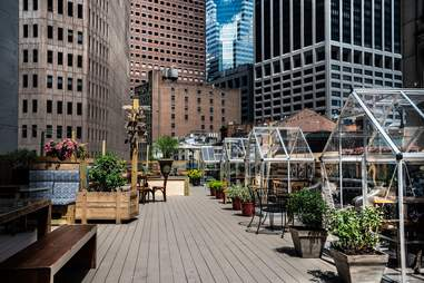 Ampia Rooftop greenhouses NYC