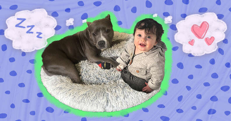 baby and dog cuddling in cozy bed